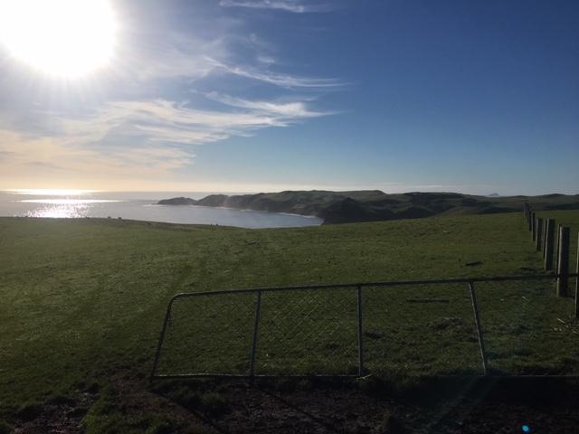 View of Pitt Island